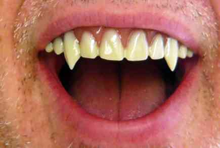 for those who prefer their fangs on canine teeth you can choose the nightslayer option