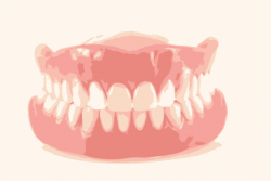 upper and lower denture cool
